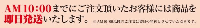 AM10:00までのご注文は即日配送いたします。